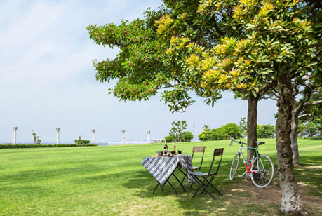 西宮市 鳴尾浜臨海公園(海釣り公園)