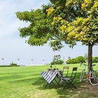 西宮市 鳴尾浜臨海公園(海釣り広場)